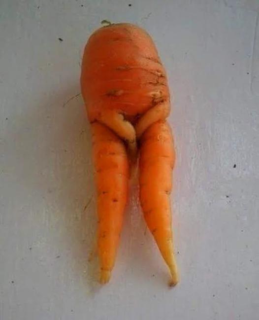 Любовь морковь картинки смешные, картинки для тимы