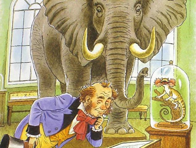 Слона то я и не приметил картинки